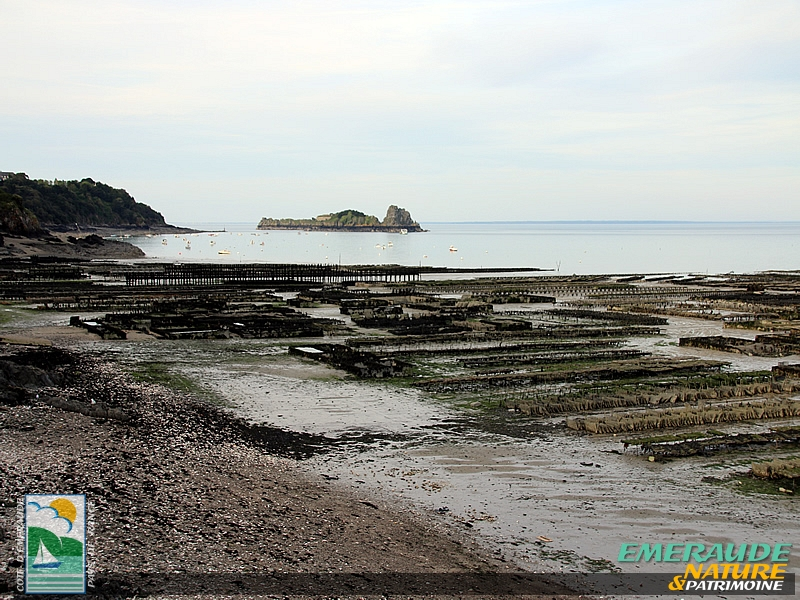 Cancale - Konkaven - Cauncall-2